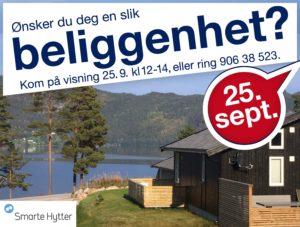 sh-bilder-finn.no-visning-25-sept-2.jpg